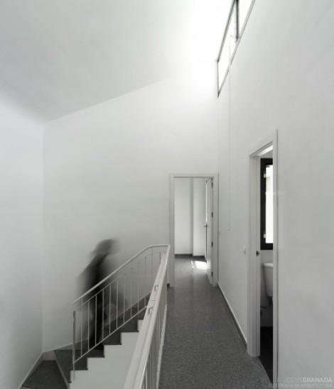 18-social-houses_02